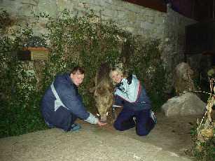 В музее флоры и фауны Западного Кавказа